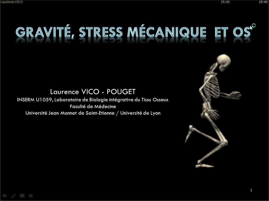 Gravité, stress mécanique et os